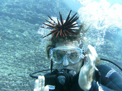 Divemaster with urchin